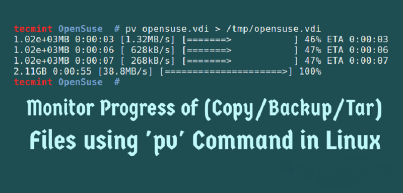 linux command pv